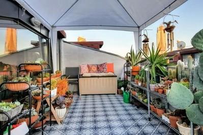 Popularne rośliny, które mogą być niebezpieczne dla dzieci. Mamo sprawdź, czy masz je na balkonie?