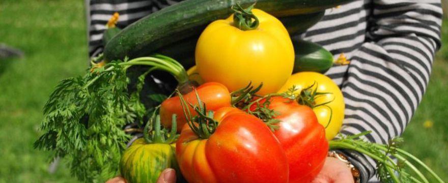 Żywienie niemowląt - kiedy wprowadzać owoce i warzywa do diety malucha?